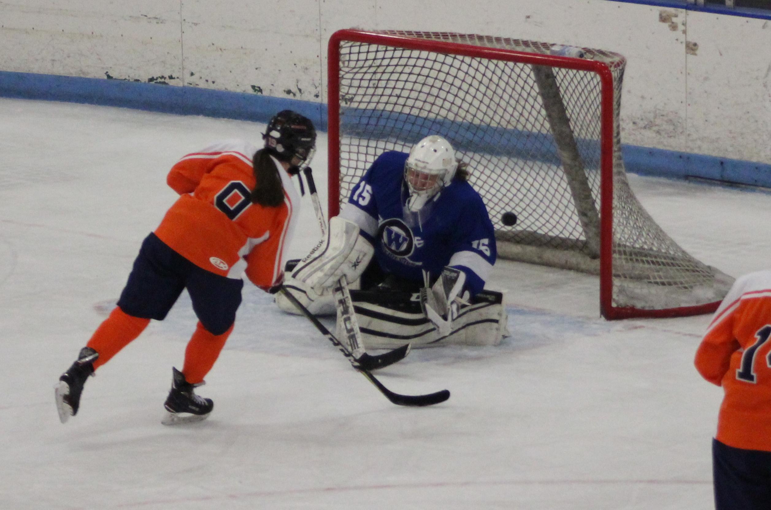 hockey-mkogan-3